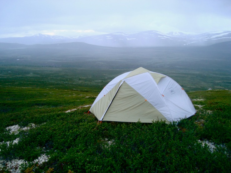 Go out to the Tent