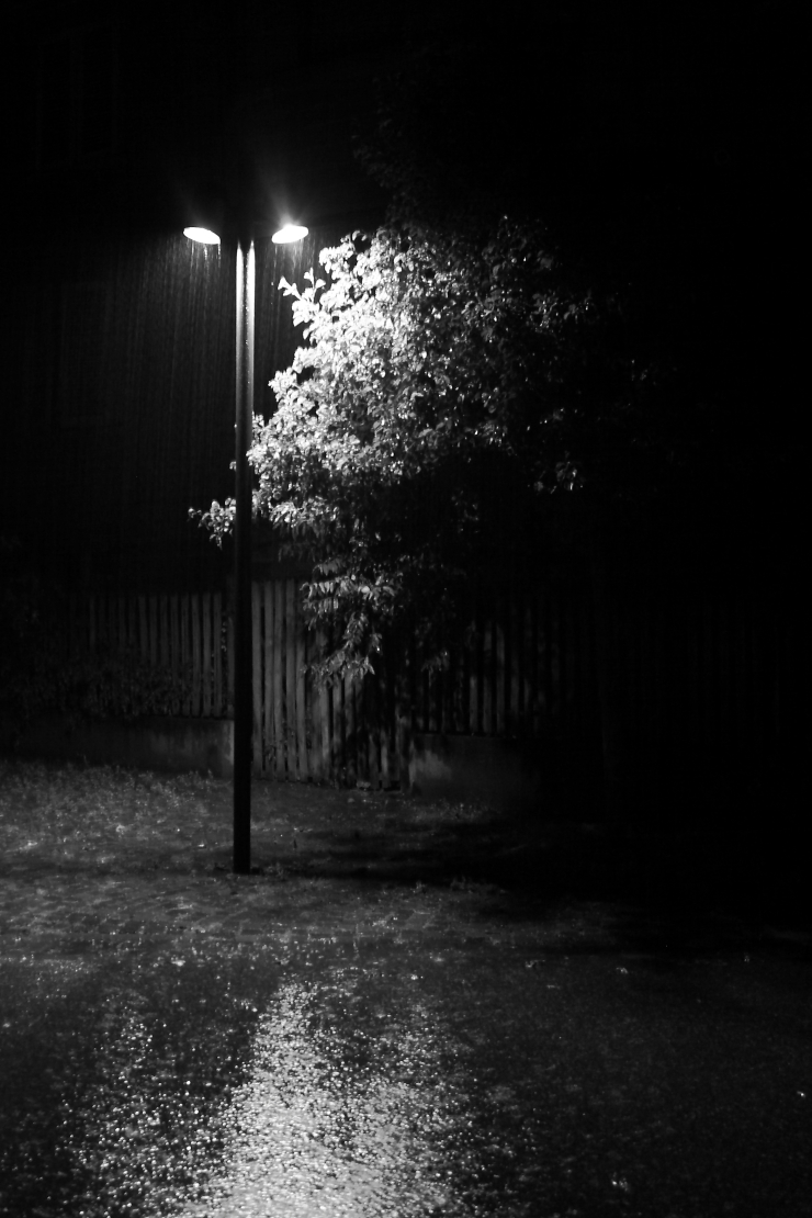 in_a_night_rain_by_dadaboum28-d5ctm8q
