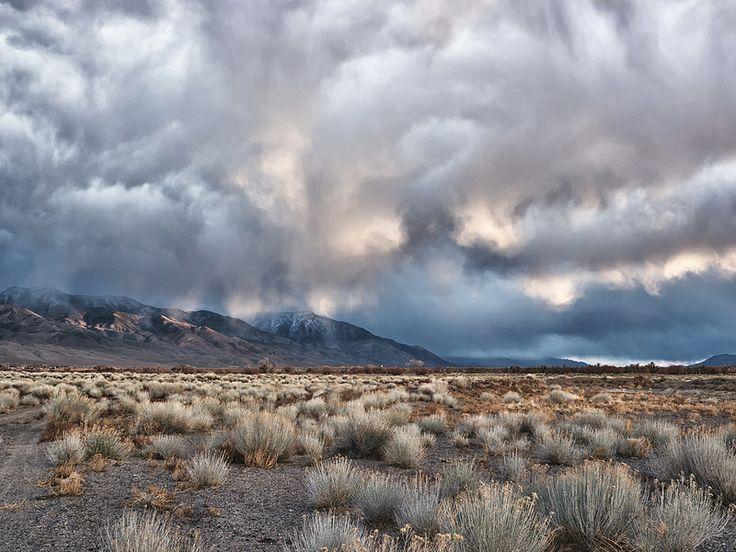 Lent Desert 1