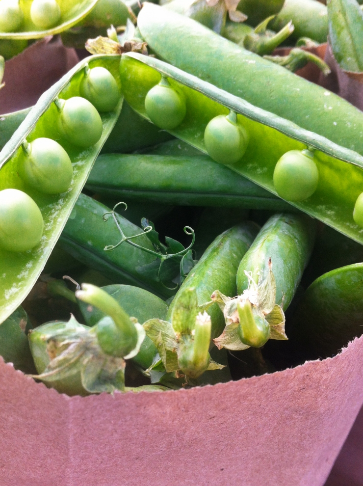 Farmers market English Peas